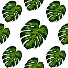 Tropical Pattern. Seamless Texture with Bright Hand Drawn Leaves of Monstera.
