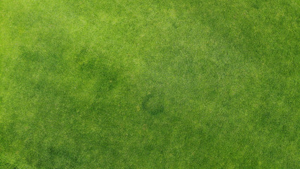 Aerial. Green grass texture background. Top view from drone. Fototapete