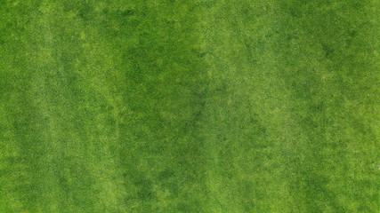 Aerial. Green grass texture background. Top view from drone. Wall mural