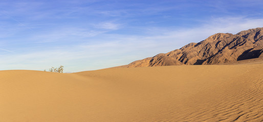 Sand dunes in a desert landscape in Death Valley California.  The vast barren land is dry and arid due to droughts result of global warming and climate change. Wall mural