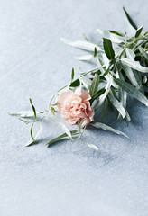 Pink carnation flower with wild olive leaves. Copy space