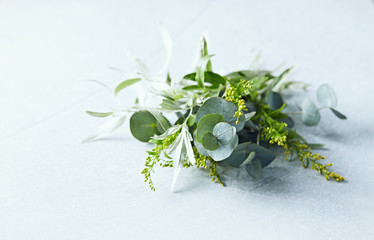 Bunch of Eucalyptus Leaves, Wild Olive and wild yellow flowers. Copy space