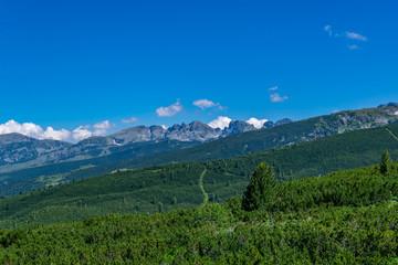 Fototapete - View of Rila mountains in Bulgaria