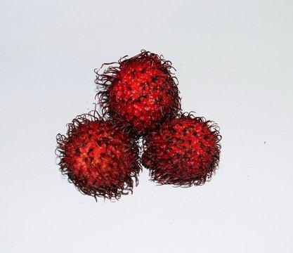 Three Red Rampton Fruits