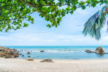 Beautiful outdoor tropical beach sea around samui island with coconut palm tree and other