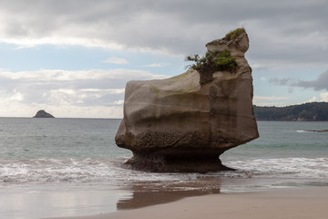 Poster Cathedral Cove View of Smiling Sphinx Rock, Cathedral Cove. Cathedral Cove and Te Hoho Rock are a number one tourist attraction in New Zealand in the Hahei Region.