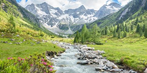 Papiers peints Pistache Panorama eines Wandergebietes in den Alpen mit Wildbach und Gletscher im Hintergrund