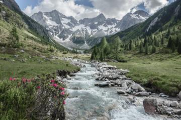 Fototapete - Panorama eines Wandergebietes in den Alpen mit Wildbach und Gletscher im Hintergrund farbreduzieret