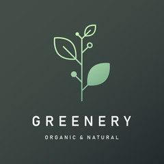Natural and organic logo in modern design. Natural logo template for branding, corporate identity, packaging and business card.