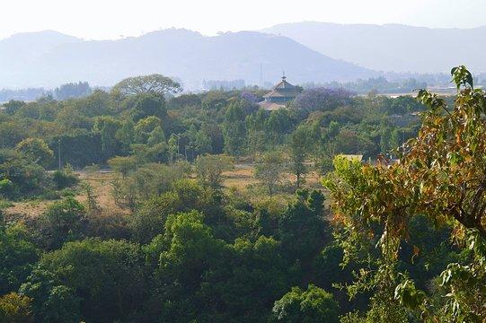 Ethiopia. Nature around the city Bahir Dar.