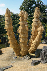 Interesting thatched effect in a Japanese style garden