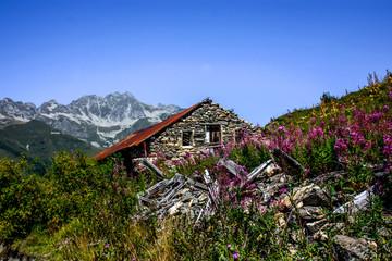 paysage de Savoie