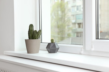 Cacti on window sill indoors. Plants for home
