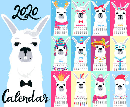 Calendar for 2020 from Sunday to Saturday. Cute llama in differe