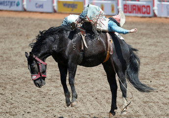Richie Champion of Dublin, Texas rides the horse Added Money in the bareback event during the Calgary Stampede rodeo in Calgary