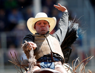 Hughson of Foremost, Alberta rides the horse Breakup Frisky in the junior saddle bronc event during the Calgary Stampede rodeo in Calgary
