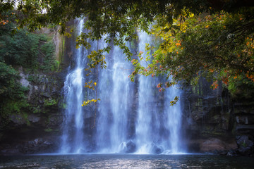 Pura Vida - This is beautiful Costa Rica