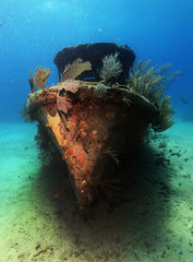 Colorful ship wreck with overgrown corals