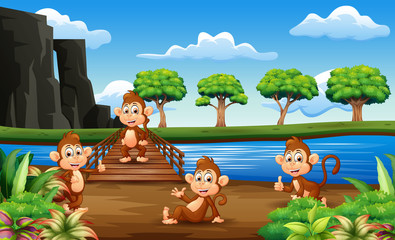 In de dag Beren Monkeys cartoon hanging out on the wooden bridge