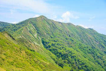 初夏の白砂山の稜線 群馬県 長野県 新潟県