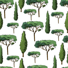 Seamless pattern with italian trees cypresses and pines. Ink and colored elements isolated on white background.