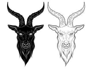 Baphomet demon goat head hand drawn print or blackwork flash tattoo art design vector illustration.