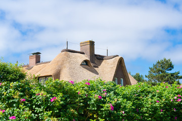 Typical house with straw roof in small village on Sylt island, Germany. Fototapete