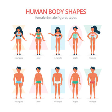 Male and female body shapes set. Triangle and rectangle