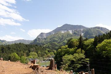 羊山公園からの景色