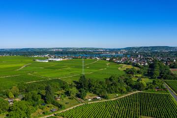 Blick ins Rheingau von oben