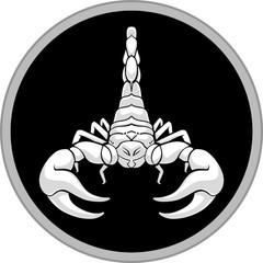 White Scorpion Shadow