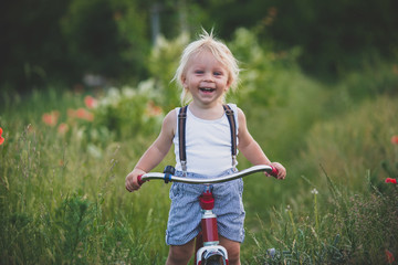 Happy beautiful toddler child, holding bouquet of wild flowers , riding retro tricycle