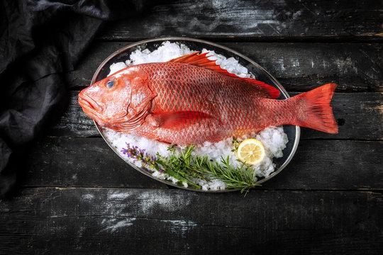 Sea delicacies. Fresh seafood. Red snepper.