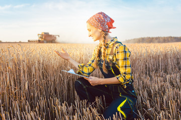 Bäuerin auf dem Feld während der Ernte mit Tablet Computer