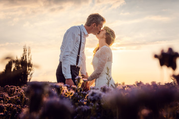 Hochzeitspaar küsst sich zum Sonnenuntergang auf der Wiese nach der Hochzeit