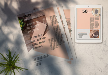 Flyer Layout with Pink and Grey Accents