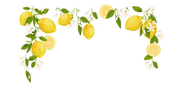 Yellow citrus fruit frame. Lemon, leaves and flowers. Tropical clip art illustration