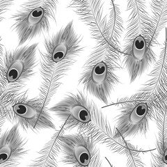 Beautiful seamless pattern with peacock feathers on white. vector illustration. EPS 10
