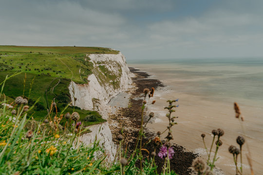 Top view of White Cliffs of Dover. Grassy coastline. Blue sky. Limestone cliffs. Aerial shot. Summer day. Seven Sisters. Scenic view. Southern England