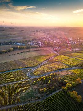 Palatinate Vineyards in Autumn at Sunset
