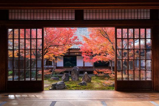 京都 建仁寺の紅葉