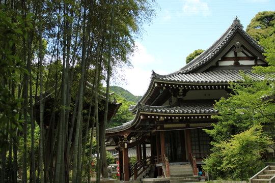 日本の寺院 毘沙門山妙法寺(神戸市須磨区)本堂と竹林