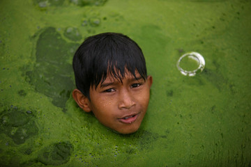 A boy swims on a pond covered with algae in Bhaktapur
