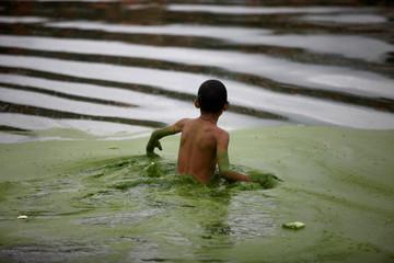A boy walks on a pond covered with algae in Bhaktapur