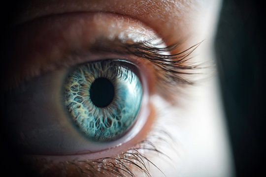 Macro photo of the woman's grey eye