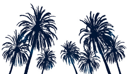 Summer background with palm trees silhouettes on white
