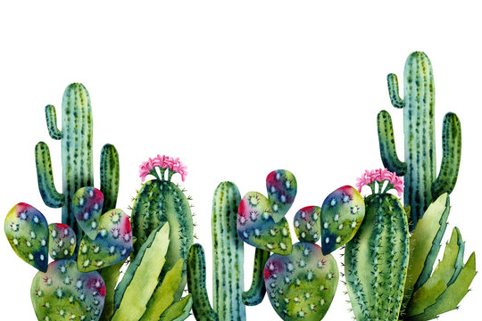 Template with watercolor cacti. Colorful illustration isolated on white. Hand painted succulents perfect for kids wallpaper, interior design, fabric textile, cases, posters, card making