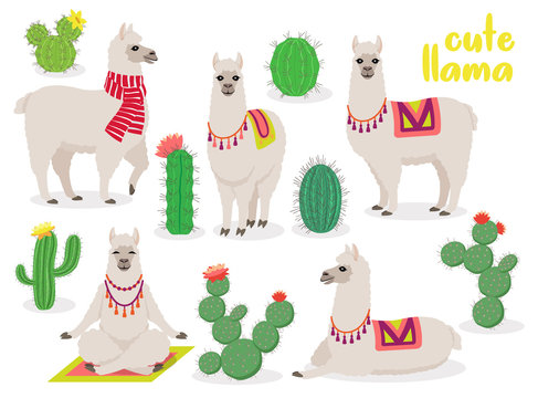 Set of cute llamas in different poses, desert with cactus