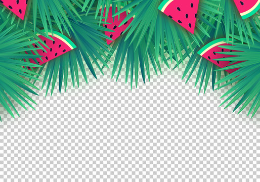 Vector Summer palm leaves with watermelon slices on transparent background. Trendy tropical frame