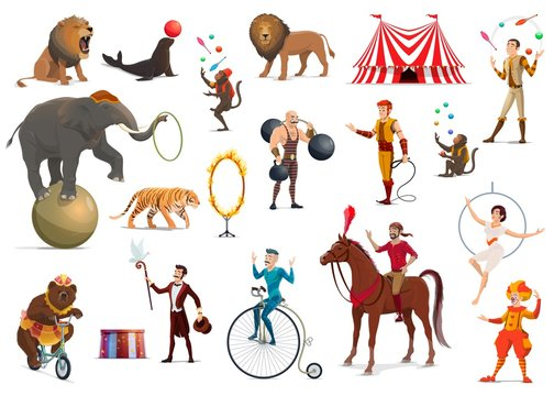 Circus acrobat, clown, trained animals, magician